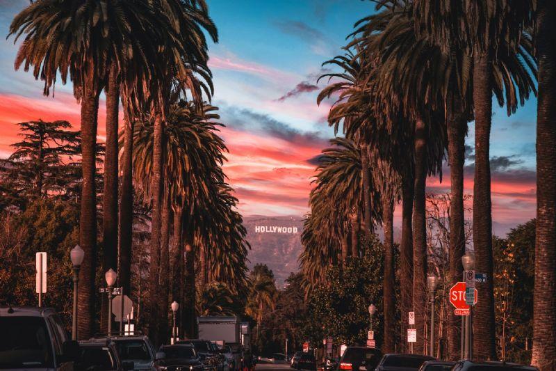 California Family Self-Drive
