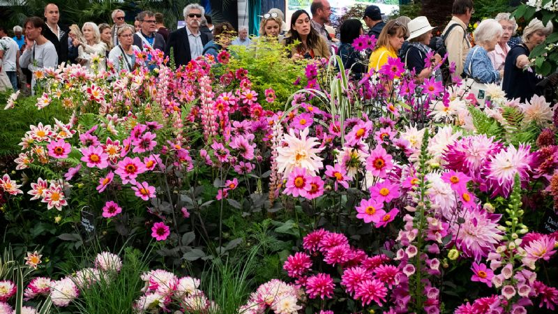 RHS Chelsea Flower Show, Royal Windsor & Kew Gardens